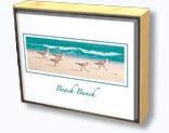 Beach Bunch